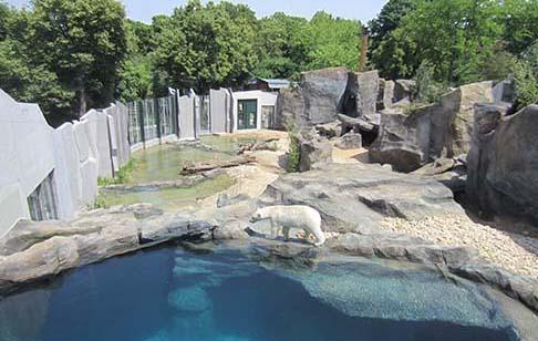 Eisbärenanlage Tiergarten Schönbrunn, Wien